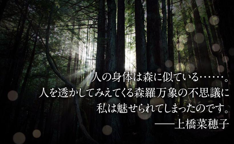 shikaking150408