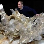 カナダの恐竜研究者が論文の謝辞でプロポーズ!