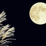 中秋の名月・撮影された美しい写真たち