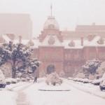 北海道で大雪積雪40センチ25日以降も要注意!