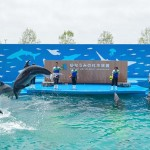 仙台うみの杜水族館 GW特別プラン「アフター16」を発表