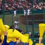 第98回全国高校野球選手権大会(甲子園) 今年の注目校は?